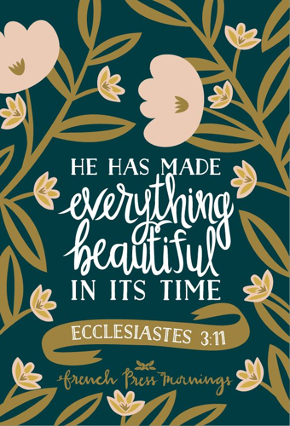 French Press Mornings - Ecclesiastes 3:11