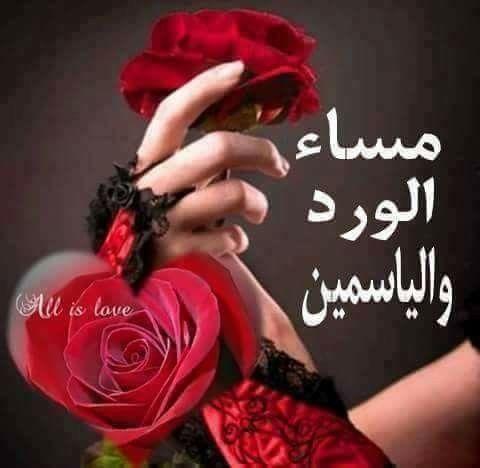 صور مساء الورد صور ورد وزهور مكتوب عليها مساء الورد والياسمين Good Evening Wishes Rose Beautiful Women Faces