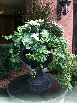 Planter ideas. So pretty with ivy, flowering kale, and garden mums in an urn.