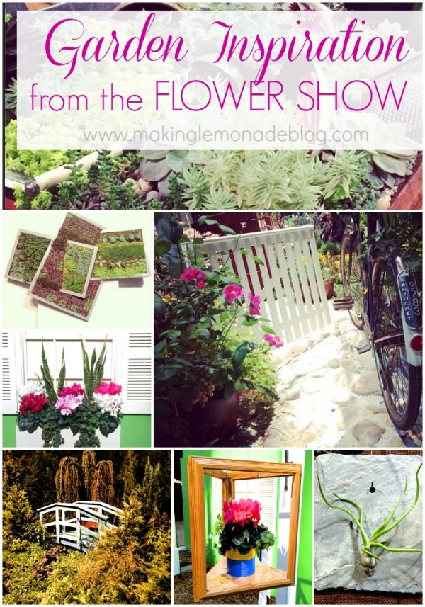 12 best soil building images on pinterest agriculture for Indoor gardening expo 2014