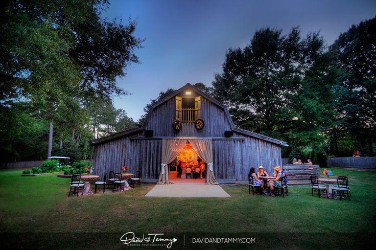 Blog | David and Tammy Wedding Photographers | David and Tammy Molnar | David Molnar Wedding Photography