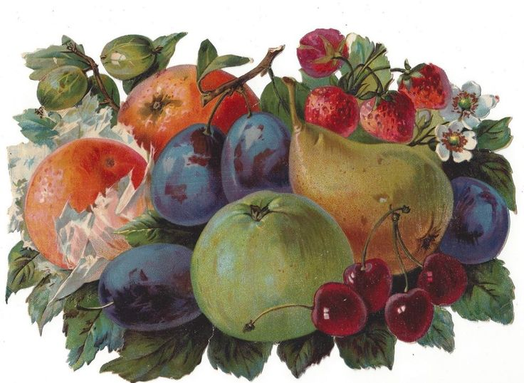 Victorian Die Cut Scrap Large selection of Fruit