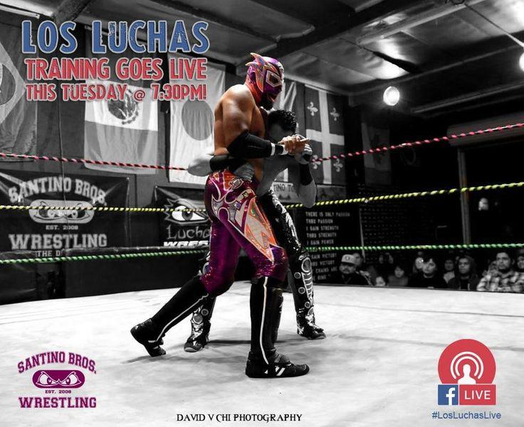 #losluchas #zorke #phoenixstar #luchalibre #prowrestling #art #santinobros #facebooklive #hardwork