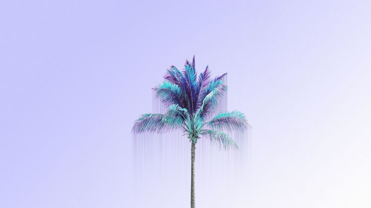 Fondo De Pantalla Con Iniciales: Lavender Lilac Blue Palm Tree Desktop Wallpaper Background