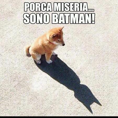 Porca miseria... Sono #Batman!