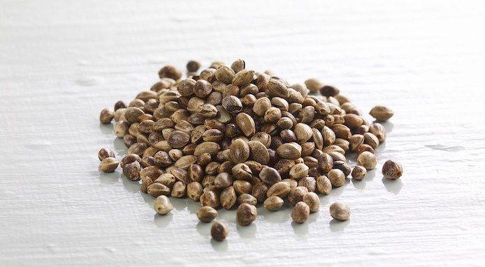5 buoni motivi per aggiungere l'olio di semi di canapa alla tua tavola!
