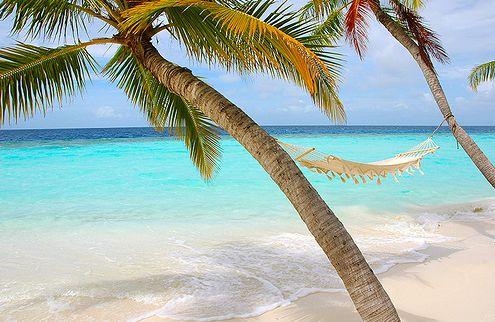 Hammock by the Beach, Ah Heaven!Dreams, Aqua Blue, Hammocks, Palms Trees, At The Beach, Places, Summertime, Beach Pictures, Summer Time