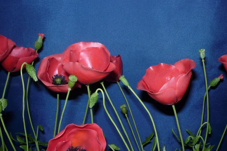 Papaver rhoeas - Pipacs ..........Clay Flowers in the Museum of Natural History - Grassalkovich Castle, Hatvan ..........Agyagvirágok a Természettudományi Múzeumban - Grassalkovich Kastély, Hatvan