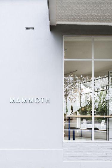 Project Mammoth VIC  Design Practice Techné Architecture + Interior Design