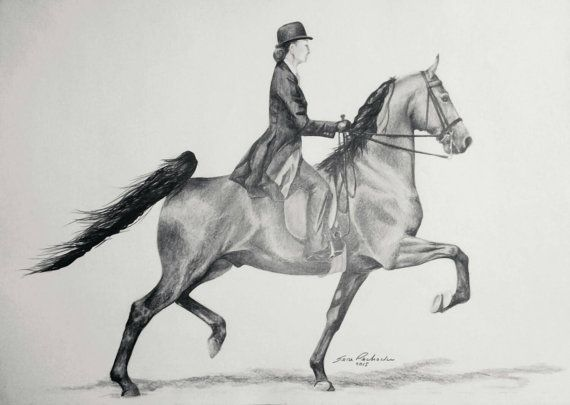 Check out this item in my Etsy shop https://www.etsy.com/listing/248112037/saddleseat-horse-original-pencil-drawing