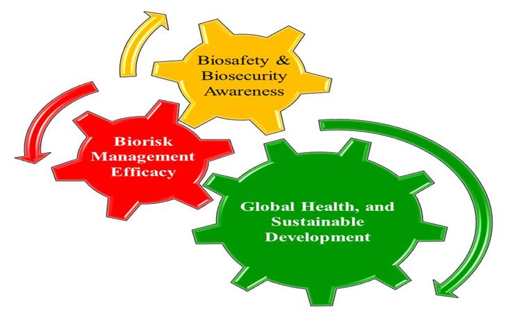 Highlights of biosafety and biosecurity month bbm at the