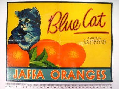 BLUE CAT. Jaffa Oranges