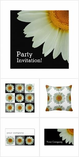 White Daisy Collection from #FlowerBarrow