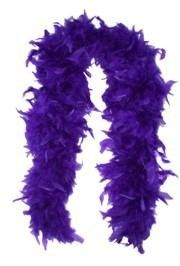 Purple Feather Boas  $3.95