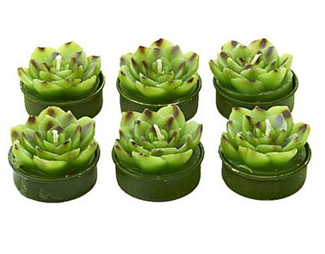 Succulents that glow! These charming candles look like plants you took straight from your garden, Bunny Williams-style. $9 for a box of six. Lexington Gardens: 212-861-4390.