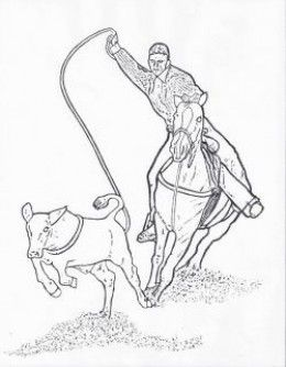 Rodeo Coloring Pages - Free Printables