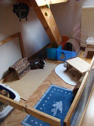 recommended rabbit housing: Indoor deluxe living areas for bunnies