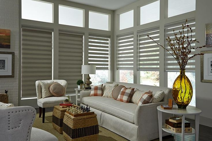 Allure® Transitional Shades with Sure Lift Wand for Child Safety