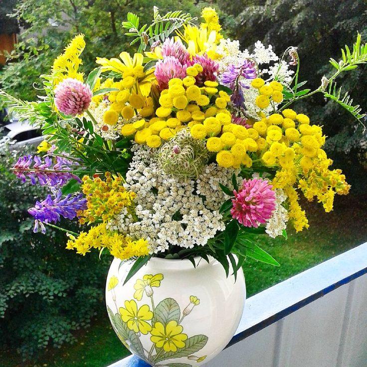 Takim bukietem mąż mnie z rana przywitał więc ja też Was nim witam♡ Życzę kolorowego wesołego dnia♡ #dzieńdobry #witamserdecznie #miłegowtorku #bukiet #kwiatypolne #здравствуйте #доброеутро #букет #луговыецветы #goodmorning #bouquet #wildflowers #happyday