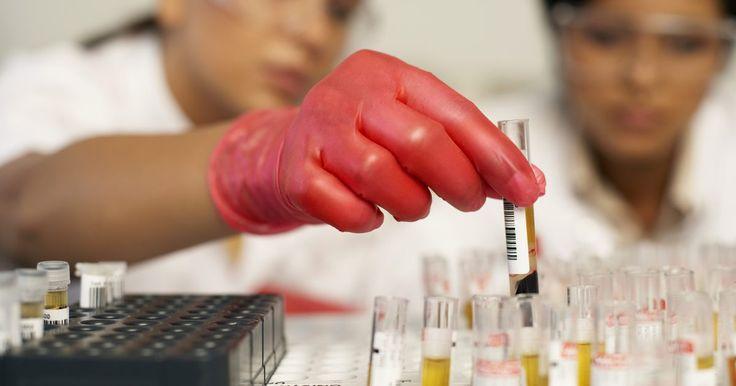 Cómo iniciar un negocio de laboratorio médico. Los laboratorios médicos difieren de los laboratorios de investigación o académicos ya que estos manejan muestras biológicas e información confidencial de los pacientes. Su personal está compuesto por profesionales de diferentes orígenes y experiencia en las ciencias de laboratorio clínico. Una persona con un conocimiento de los negocios suele ser ...