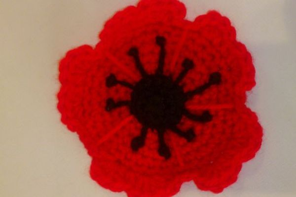 1000+ images about Poppies on Pinterest