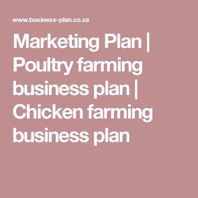 Marketing Plan | Poultry farming business plan | Chicken farming business plan