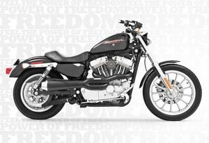 Image of Freedom Performance Exhaust American Outlaw Hi 2-into-1 Exhaust Black W Black End Cap- Harley XL883LXL883NXL1200CXL1200VXL1200X 2014 - HD00415