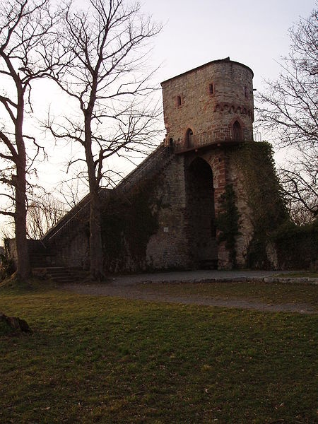 Burg Hohennagold (Nagold, Landkreis Calw)