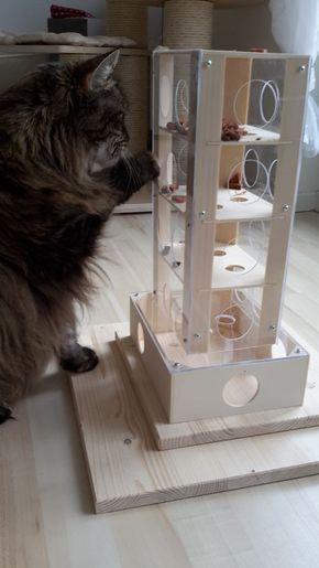 Intelligenzspiel für Katzen Spielzeug – G.k.