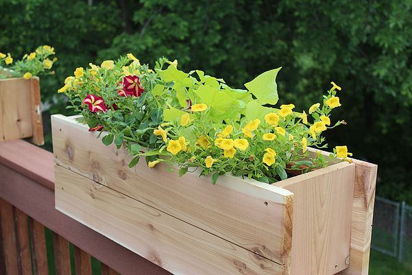 DIY Deck Rail Planter | 29minutegardener.com
