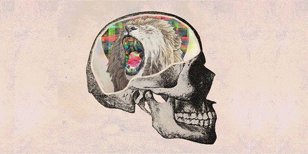 Люди не такие умные, какими кажутся!  Понимание законов психологии поможет вам объяснить иррациональность внешнего мира и те глупости, которые люди совершают каждый день.  Представленные ниже шесть психологических феноменов помогут вам не только лучше понять, почему люди повторяют одни и те же г