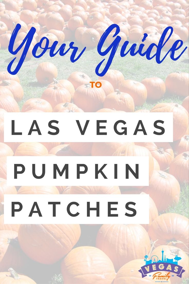 Guide to Las Vegas pumpkin patches and within the surrounding area. Also, information on corn mazes and other fall family fun. via @vegasfamtravel