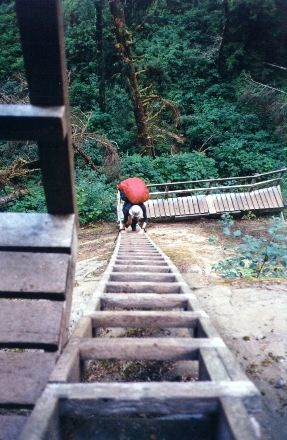 West Coast Trail in British Columbia has just been added to my bucket list.
