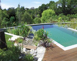 natural pools | Landscape Design Case Study Natural Pools :  Landscapedesign.co.nz