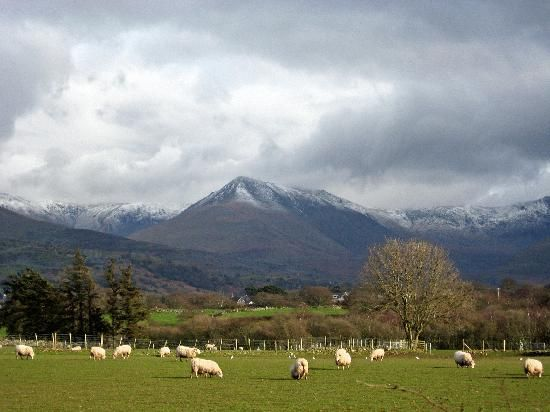 Wales, ancestral home of my wife's paternal-side family.