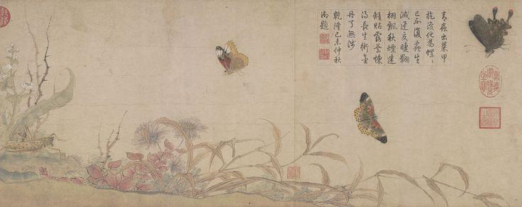 赵昌写生蛱蝶图卷 - 故宫博物院