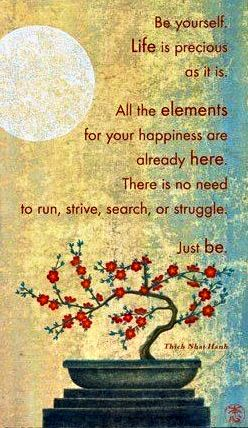 Be Yourself. Life is precious as it is. All the elements for your happiness are already here. There is no need to run, strive, search, or struggle. Just Be. ~ Thich Nhat Hanh