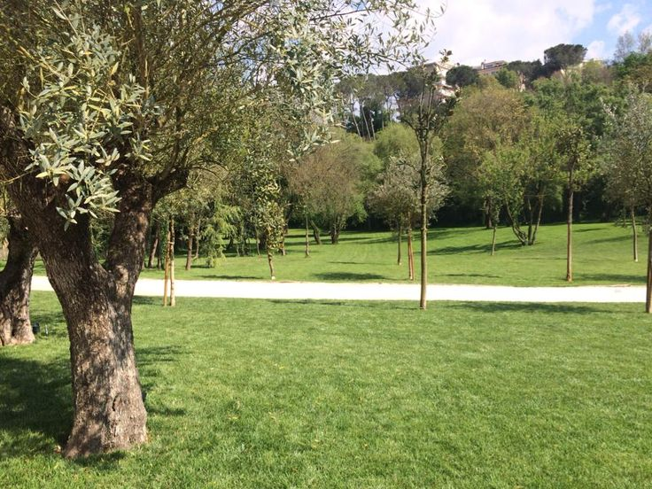 Il parco di Caio è a vostra disposizione per: Picnic, pause in relax, far giocare i vostri bambini. A due passi dal centro avrete la sensazione di essere in un altro mondo!