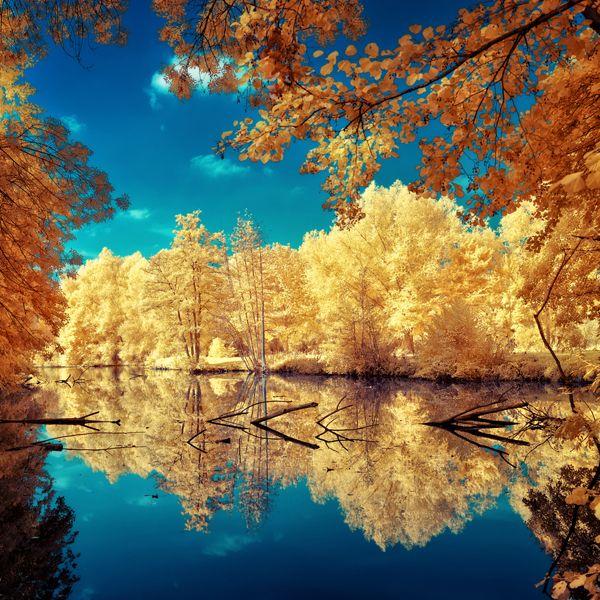 Amazing Landscape Reflection Photos