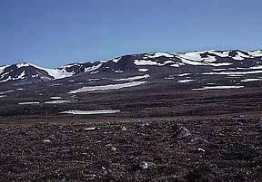 This is an example of a tundra. As you can see the land is very bare.  Due to the extremely cold climate and the lack of precipitation, plant growth is very limited.