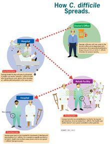 Clostridium difficile - Wikipedia, the free encyclopedia. C-DIFF