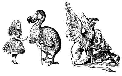 17 Best Images About Dodo Bird On Pinterest Birds