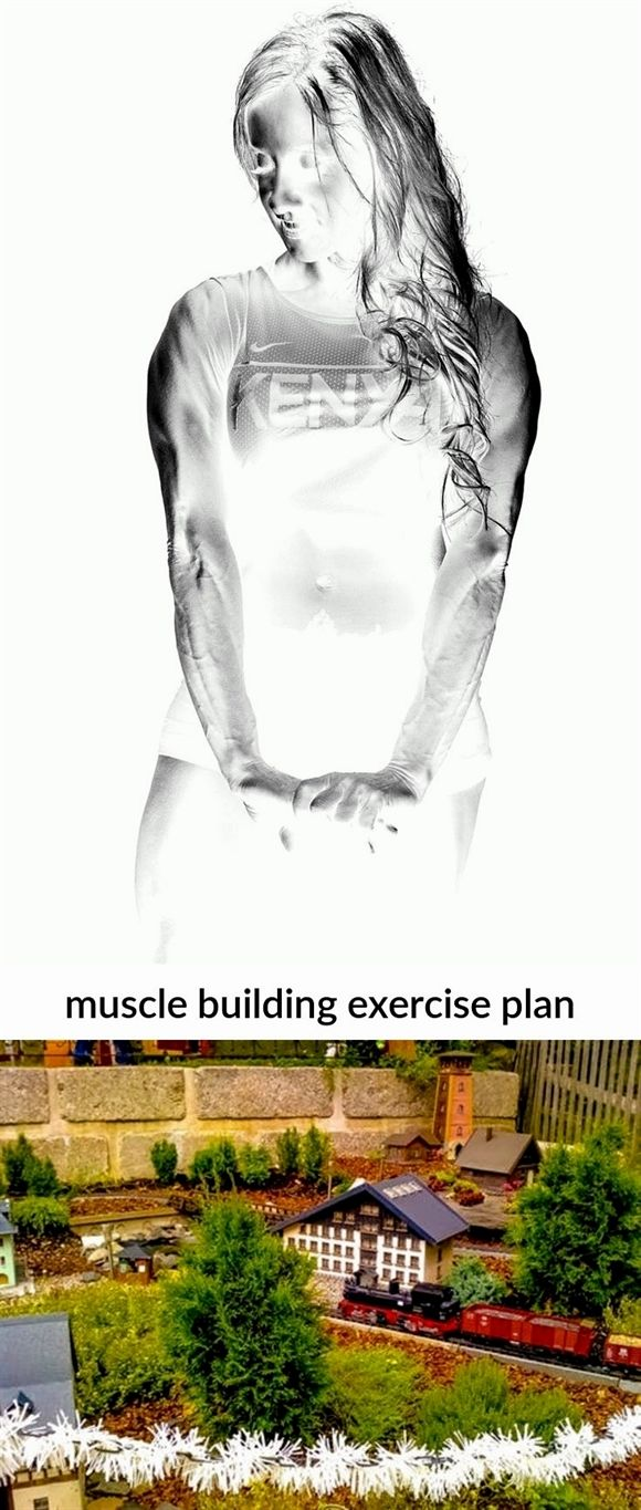 #muscle building exercise plan_146_20190329091712_51    fast #muscle building ca…
