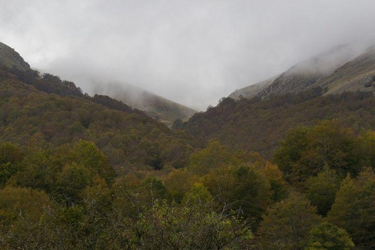 Parco nazionale d'Abruzzo  #abruzzo #landscape