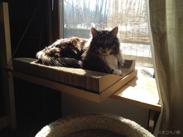 2 4とディアウォールで手作りできる 木登りキャットタワーの作り方 ネコモノ帳 2021 猫 ベッド の 作り方 キャットタワー