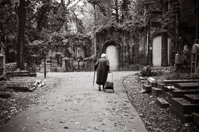 Olšanské hřbitovy, Praha, Chasing light blog