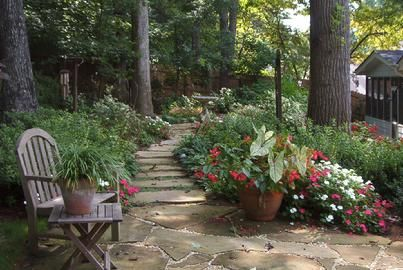 17 best images about wooded landscape on pinterest for Landscaping ideas for wooded areas