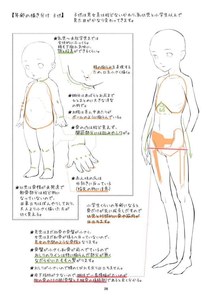 男女描き分けの備考ですが、 少年はまだ成人男性のように肋骨と骨盤が大きくなく、骨自体もしなやかに柔らかいので、少女とさほど変わらない見た目になります。  あと、幼児のイラストは目を小さく描いたほうが幼く見えるという落とし穴もあったり。