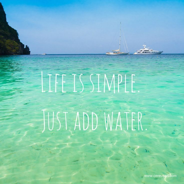 Life Is Simple: Just Add Water.