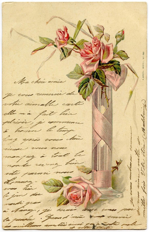 * El gráfico de hadas LLC *: Imagen romántico francés - Pink Roses - escritura a mano